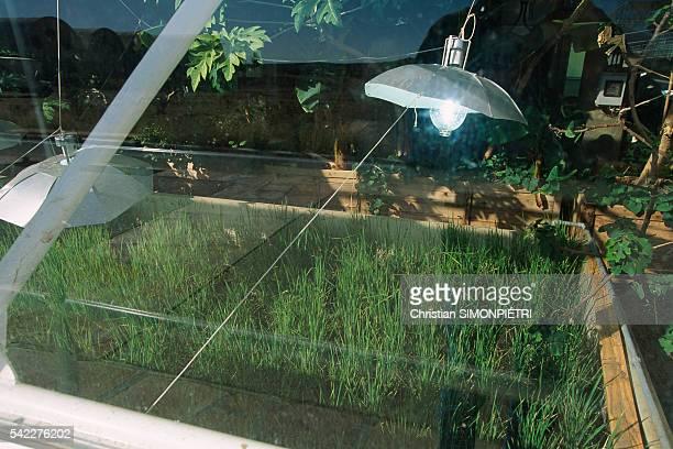 Biosphere Experience