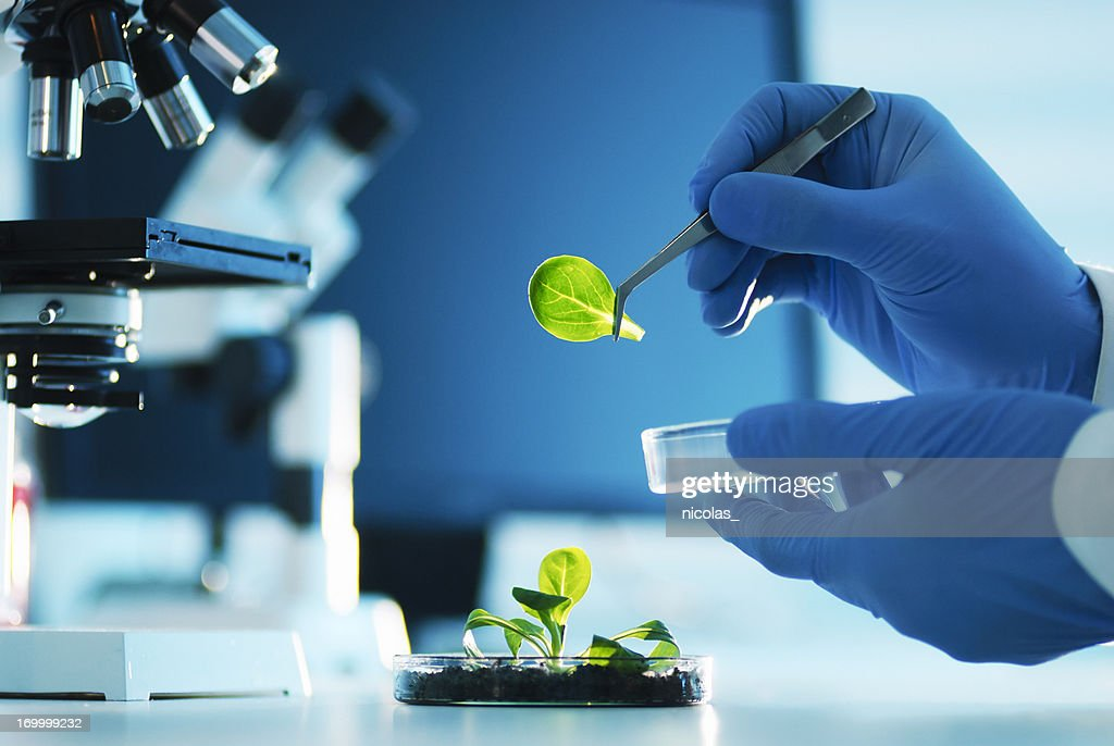 Biotechnology : Stock Photo