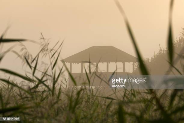 Bird and wildlife observation point in early morning fog, Lake Ammersee region, Diessen, Upper Bavaria, Germany