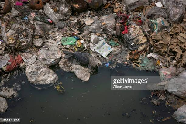 A bird drinks water from a canal which empties into the Buriganga river on June 3 2018 in Dhaka Bangladesh Bangladesh has been reportedly ranked 10th...