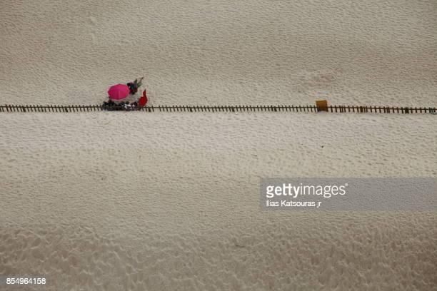 Bird eye view of people on sandy beach