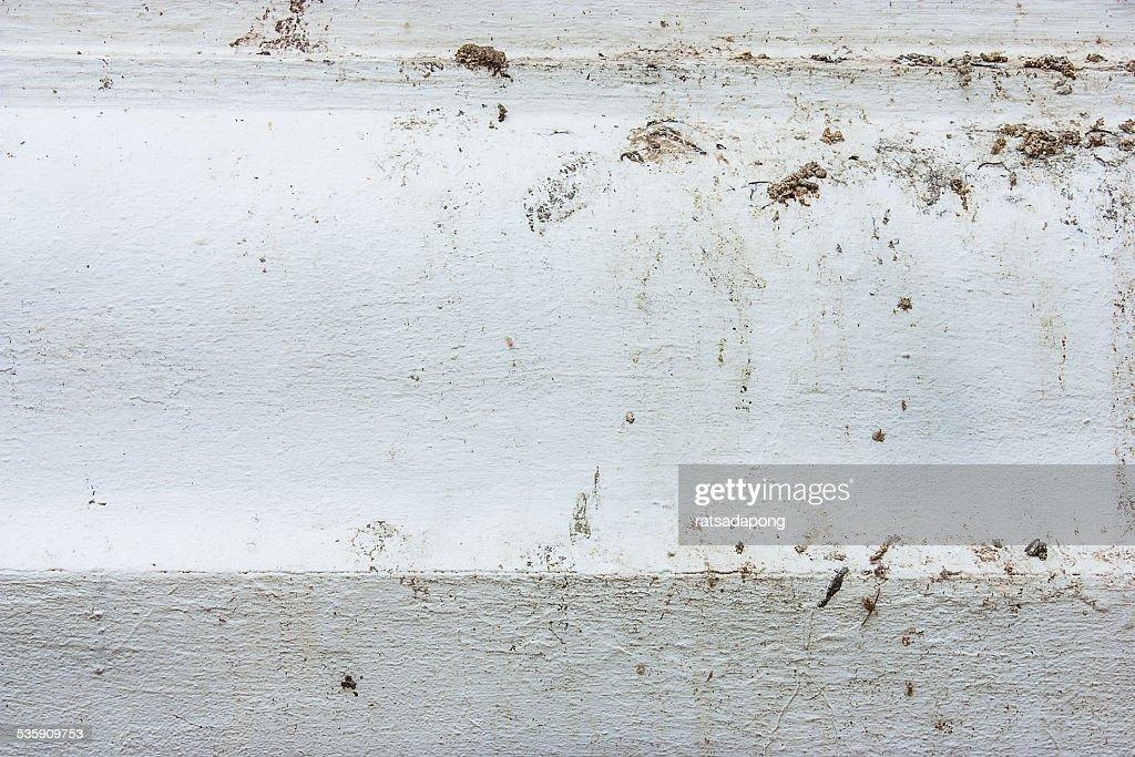 Bird feces is dirty : Stock Photo
