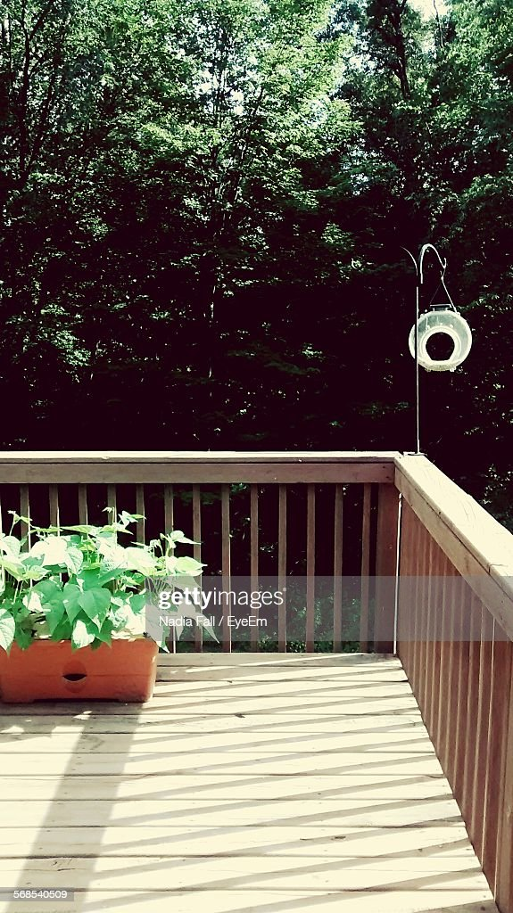 Bird Feeder Hanging On Railing At Patio : Stock Photo