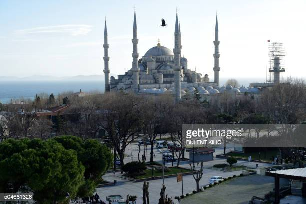 TOPSHOT A bird flies over the Blue Mosque after a blast in Istanbul's tourist hub of Sultanahmet on January 12 2016 At least 10 people were killed...