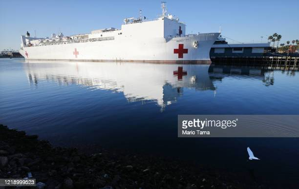 A bird flies past the USNS Mercy Navy hospital ship docked in the Port of Los Angeles amidst the coronavirus pandemic on April 15 2020 in San Pedro...