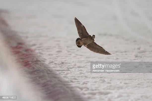 A bird flight at the finish arena on day 2 of the Four Hills Tournament Ski Jumping event at SchattenbergSchanze Erdinger Arena on December 28 2014...