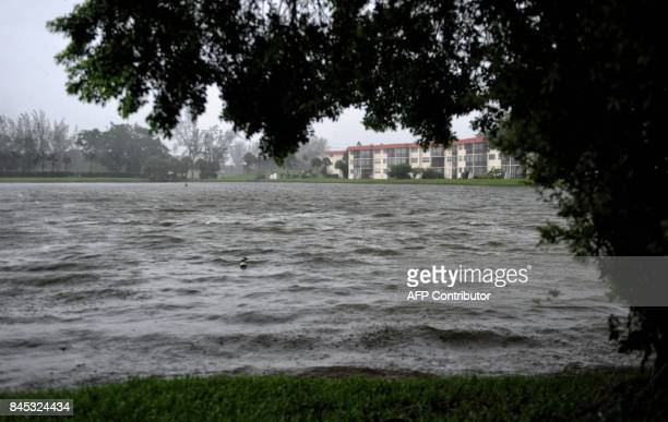 A bird floats on stormy water as hurricane Irma moves through the area of Pembroke Pines Florida on September 10 2017 Hurricane Irma regained...