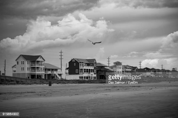bird flying over beach in city against sky - galveston stock pictures, royalty-free photos & images