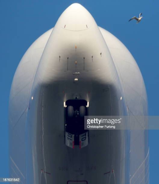 A bird flys past the nose of an Airbus A300 Beluga aircraft loaded with wings as it takes off from the Airbus SAS wing assembly factory on November 7...