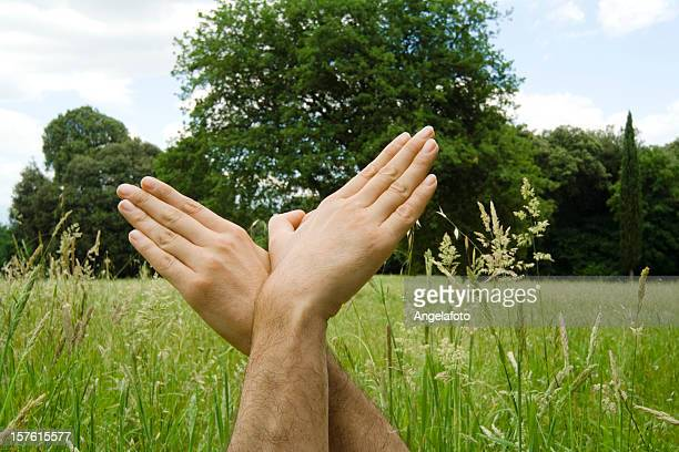 bird hand sign against grass and tree - shadow puppet stock photos and pictures