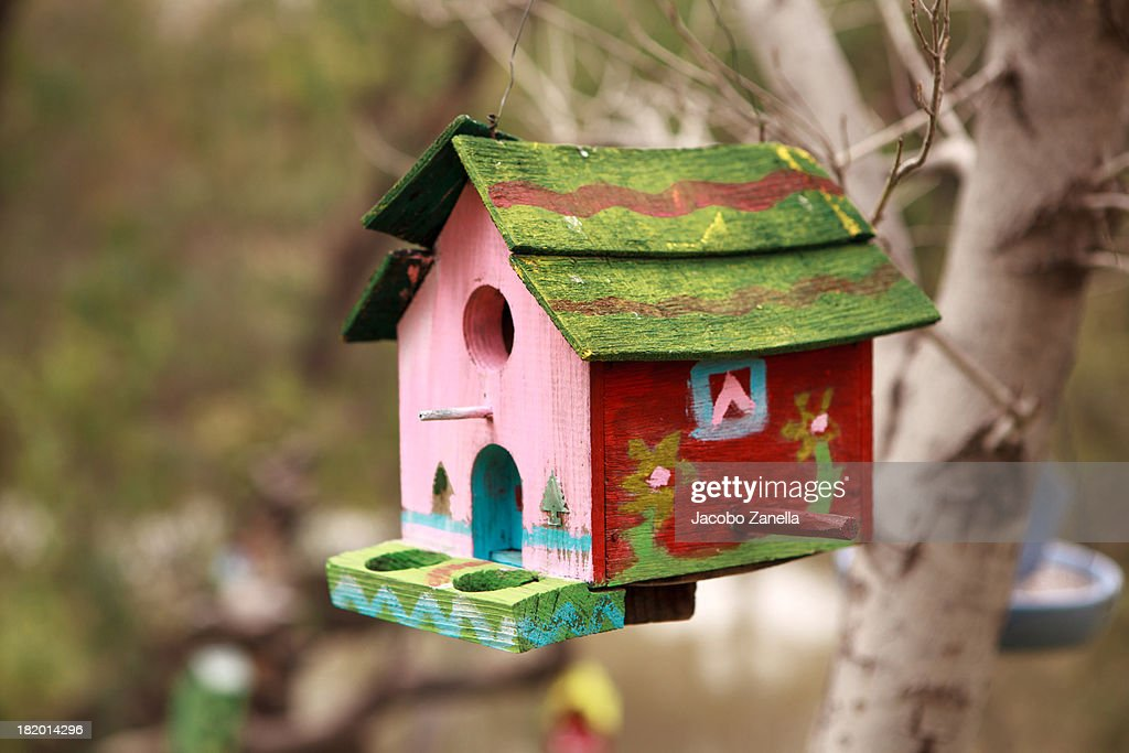 Bird house hanging from tree : Stock Photo