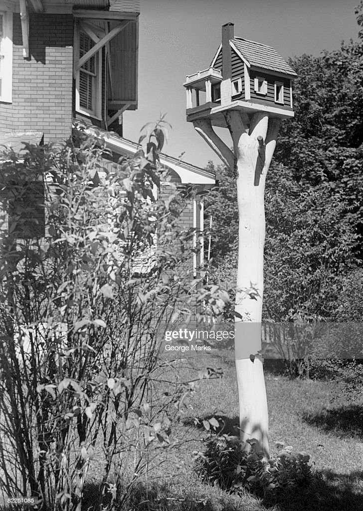 Bird house in garden : Stock Photo