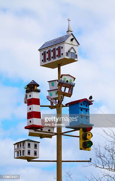 bird house village - high_island stock pictures, royalty-free photos & images