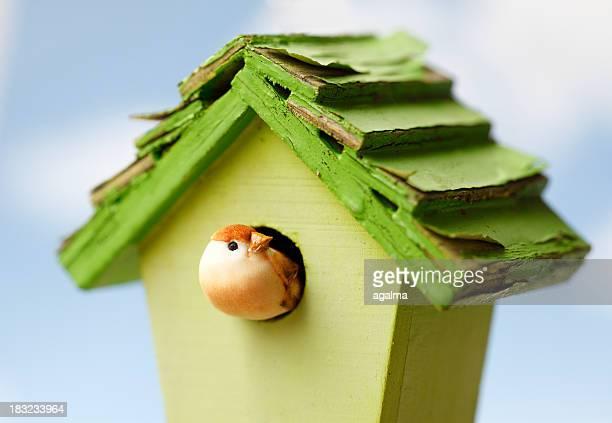 A bird house with a small bird