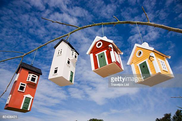 bird houses hanging from a branch - birdhouse stock pictures, royalty-free photos & images