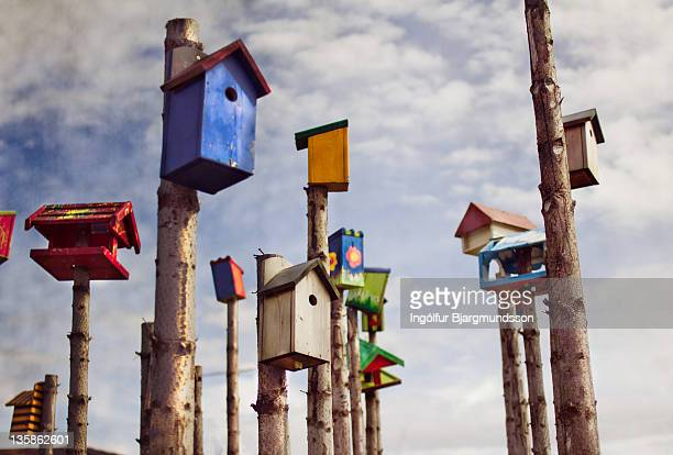 bird houses - birdhouse stock pictures, royalty-free photos & images