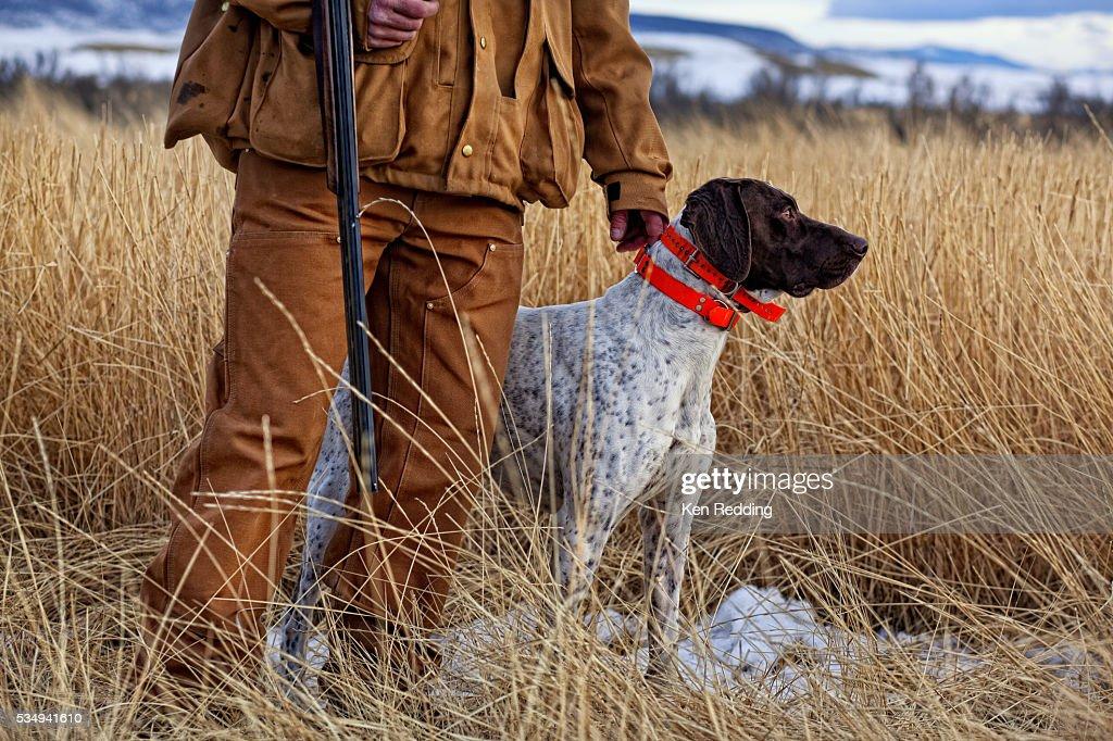 Bird Hunter with Dog : Stock Photo