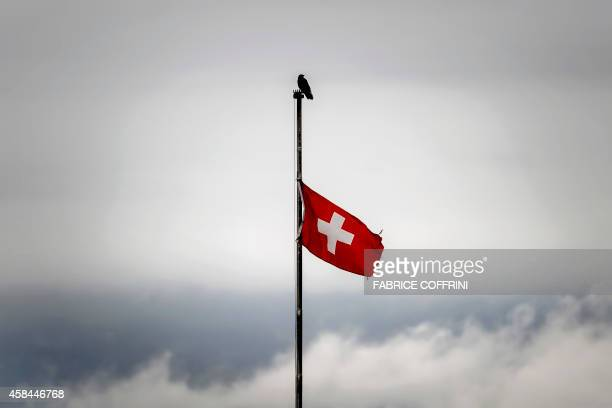 A bird is perched atop of a flag pole as the Swiss flag flutters under heavy clouds on November 5 2014 in Geneva AFP PHOTO / FABRICE COFFRINI