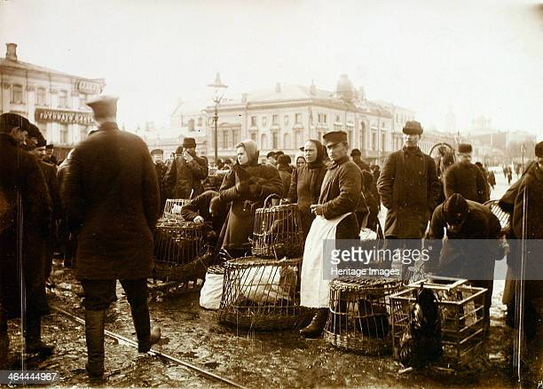 Bird market Trubnaya Square Moscow Russia 1908 Found in the collection of the Russian State Film and Photo Archive Krasnogorsk