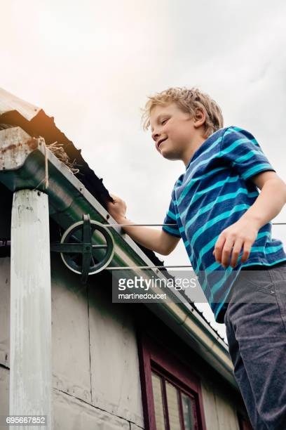Bird nest on the shed, little boy looking to see if there are eggs.
