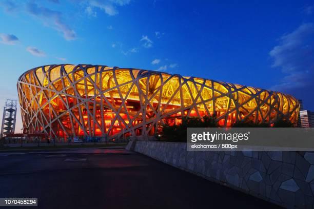 bird nest stadium - stadio olimpico nazionale foto e immagini stock