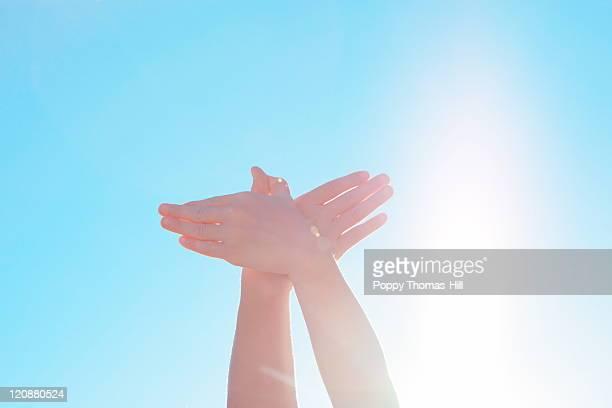 Bird of peace hands
