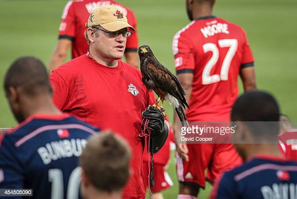 A bird of prey stands guard on the pitch as the players walk onto the field before the game between Toronto FC and New England Revolution at BMO Field