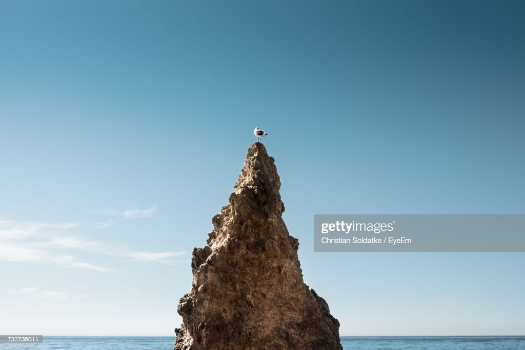 Bird On Rock Formation Against Clear Sky : Stock-Foto