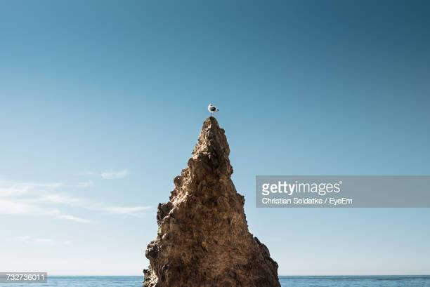 Bird On Rock Formation Against Clear Sky