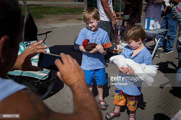 Bird owner Howard Kaminsky,left, photographs youngsters Jack and Archibald Cobb of Carlsbad as they hold two of Kaminsky's birds while visiting...