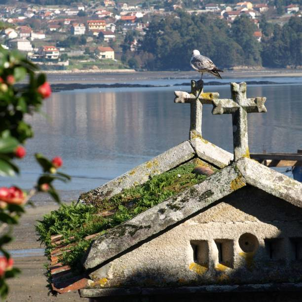 Bird Perching On Horreo By The Sea