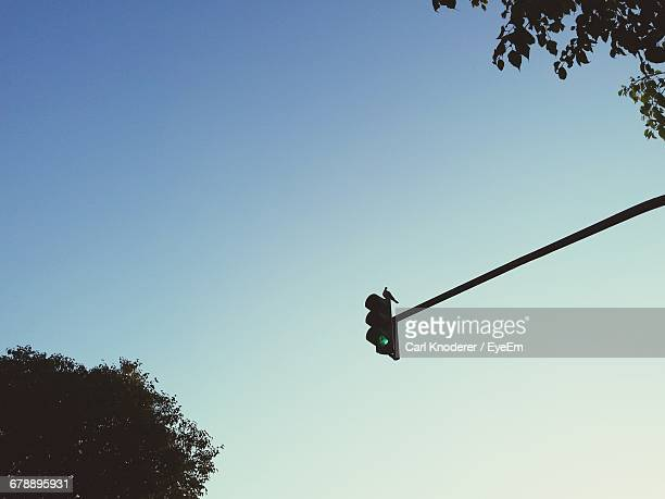 Bird Perching On Road Signal Against Sky