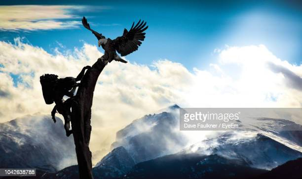 Bird Perching On Sculpture Against Cloudy Sky
