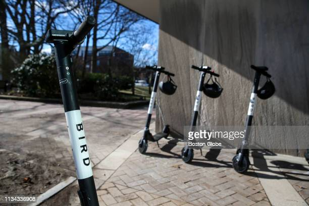 Bird rental scooters are pictured in Brookline MA on April 1 2019 Brookline made Massachusetts history Monday as the first municipality to sanction...