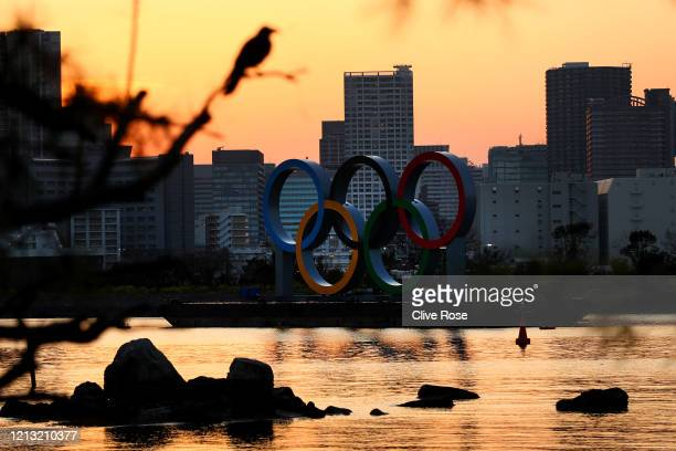 Bird rests on a branch as the sun sets behind the Olympic rings installation at Odaiba Marine Park on March 18, 2020 in Tokyo, Japan.