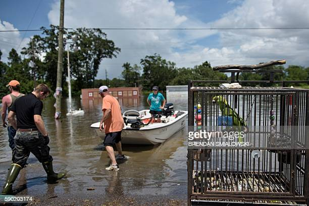 TOPSHOT A bird sits in a cage as people offload belongins from a boat after flooding August 16 2016 in Gonzales Louisiana / AFP / Brendan Smialowski