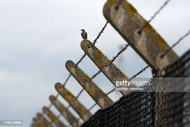 A bird sits on a barbed wire fence surrounding Aberthaw coalfired power station at Limpert Bay near the villages of Gileston and West Aberthawon on...