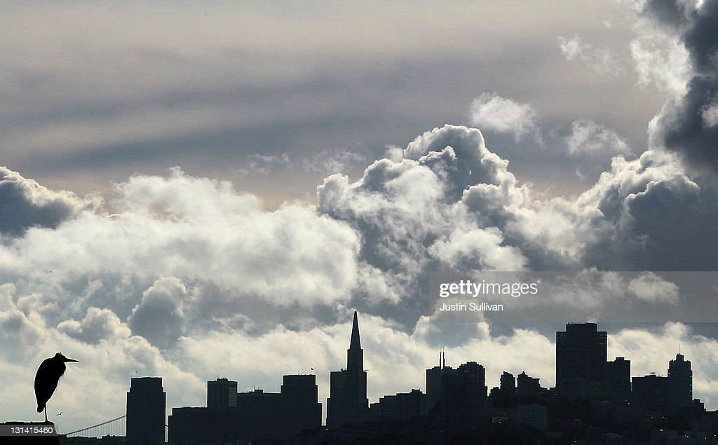 A bird sits on a perch as clouds pass over the San Francisco skyline on November 4, 2011 in Sausalito, California. The San Francisco Bay Area will see mostly cloudy skies that will lead to a chance of showers in the afternoon. Daytime highs will reach into the upper 50s.