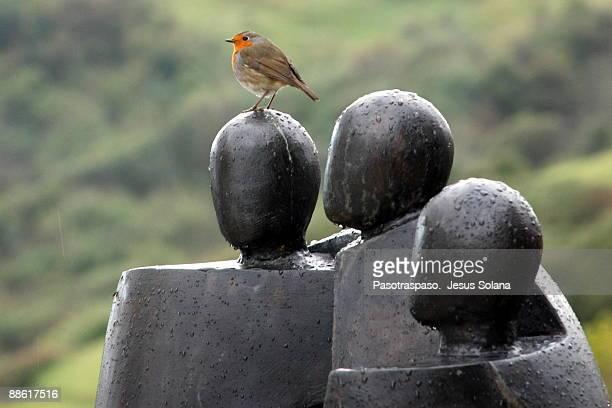 Bird sitting on statue