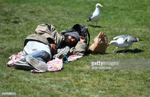 A bird steals a bag of food from a homeless man while he sleeps in front of City Hall in San Francisco California on June 2016