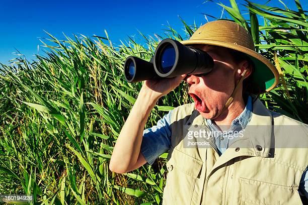 Vigilante de Pássaro no Safari