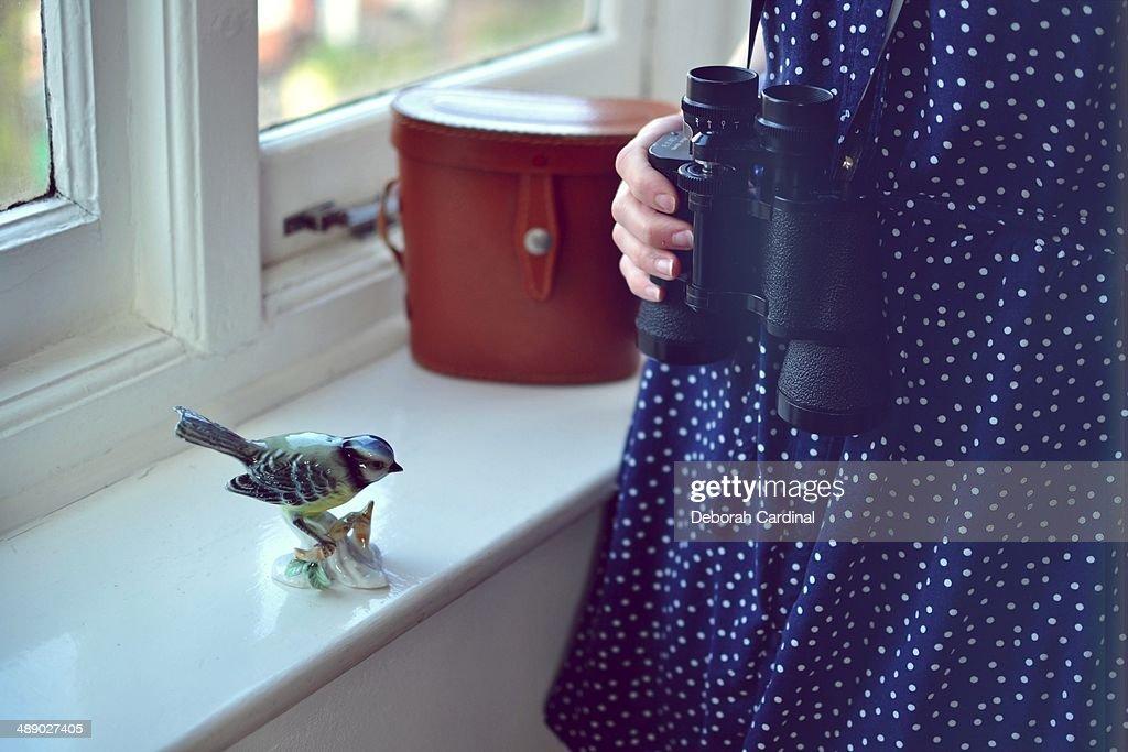 Bird Watcher : Stock Photo