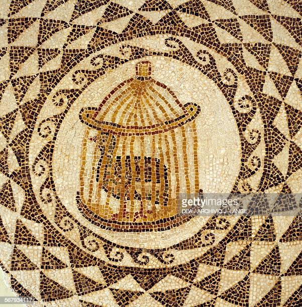 Birdcage mosaic from Carthage Tunisia Roman civilisation Detail Tunis Musée National Du Bardo