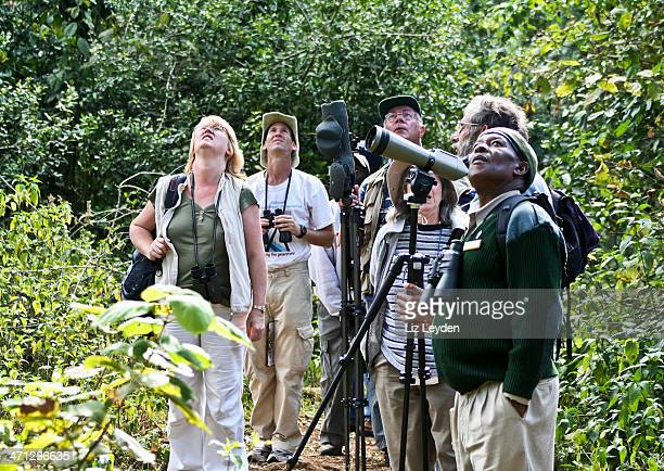Birders birdwatching on safari, Mt Kenya National Park