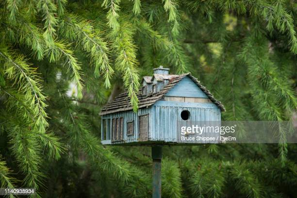 birdhouse against trees - birdhouse stock pictures, royalty-free photos & images