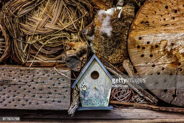 birdhouse and wood assortment - vogelhäuschen stock-fotos und bilder