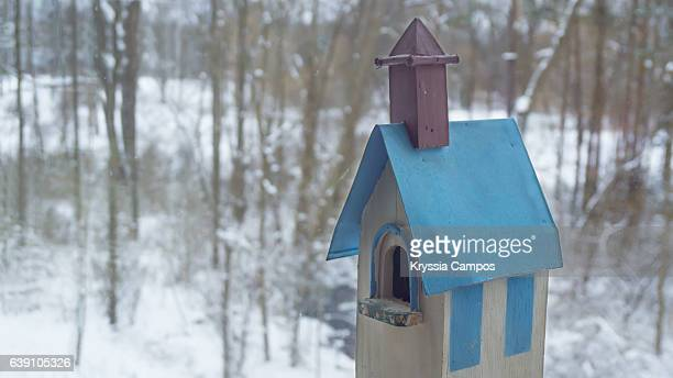 birdhouse during winter - birdhouse stock photos and pictures