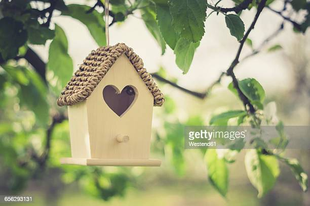 birdhouse hanging on apple tree - birdhouse stock pictures, royalty-free photos & images