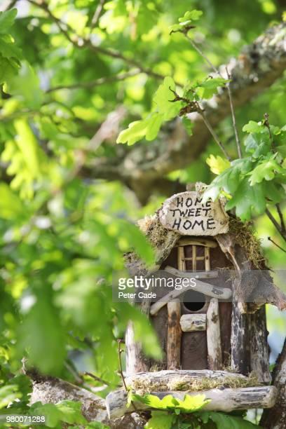 Birdhouse in tree