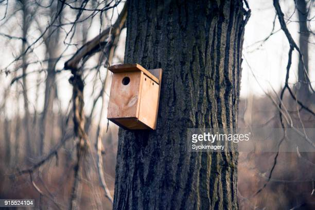 birdhouse - birdhouse stock pictures, royalty-free photos & images